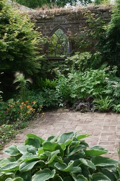 On the far wall, a mirror reflects light back into the shady end of the garden, which is planted with ferns and hostas. This is a handy trick for making a small garden feel larger. Small Garden Images, Plants For Small Gardens, Small Courtyard Gardens, Back Gardens, Small English Garden, Small Garden Plans, Small Garden Landscape, Ferns Garden, Cottage Garden Plants