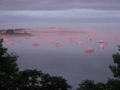 7/10/2010: Purple sunset + fog makes for a beautiful scene on Casco Bay; Chebeague Island, Maine. ~ Blue Jay Bay