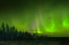 Northern Lights! Norrbotten, Sweden