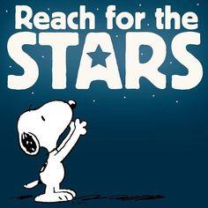 #Reach #For #The #Stars #Vida