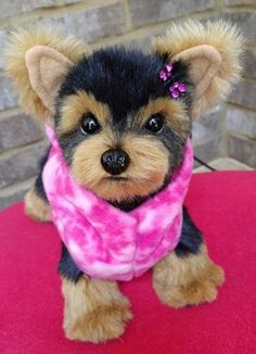 BISCOTTI a tea cup Yorkie puppy dog By Brigitte Crowe - Bear Pile