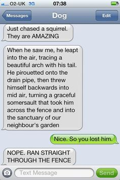 Text from Dog - haha