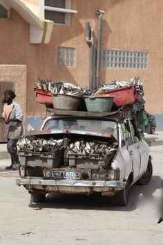Africa |  Mauritania.   Fish going to the market.
