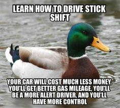 The best of Actual Advice Mallard meme. - Funny - Check out: Actual Advice Mallard Meme on Barnorama Freetime Activities, Pedobear, Things To Know, Good Things, Crazy Things, Happy Things, 21 Things, Couple Things, To Infinity And Beyond