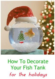 Clever Ideas For How To Decorate Your Aquarium For The Holidays...see more at PetsLady.com -The FUN site for Animal Lovers