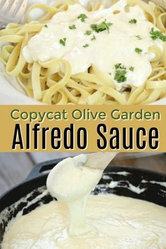 The best Copycat Olive Garden Alfredo Sauce - even better with chicken! alfredo sauce with half and half Copycat Olive Garden Fettuccini Alfredo Sauce Receta Fetuccini Alfredo, Molho Alfredo, Pasta Recipes, Dinner Recipes, Cooking Recipes, Restaurant Recipes, Cheese Tortellini Recipes, Chicken Recipes, Copycat Olive Garden Alfredo