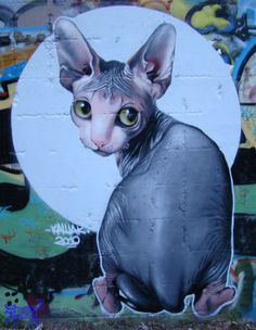 Artist: KASHAK street art cats
