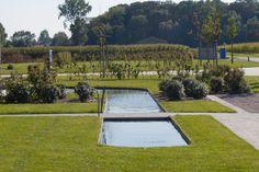 Tuinonderneming Dieter Castelein - landelijke tuin met zwemvijver