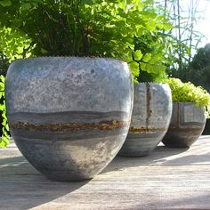Three Zinc Planters by London Garden Trading, the perfect gift for Explore more unique gifts in our curated marketplace. Zinc Planters, Corten Steel Planters, Basket Planters, Modern Planters, Garden Planters, Leafy Plants, Indoor Plants, Outdoor Pillar Lights, Beton Diy