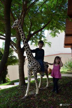 uma girafa e primos : alegria