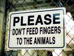 Dieren bordjes 1