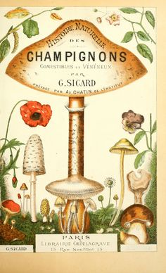 https://flic.kr/p/a6XG6F | n6_w1150 | Histoire naturelle des champignons comestibles et vénéneux Paris :C. Delagrave,1883. biodiversitylibrary.org/page/3274150