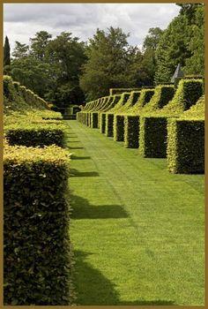 topiary, formal garden