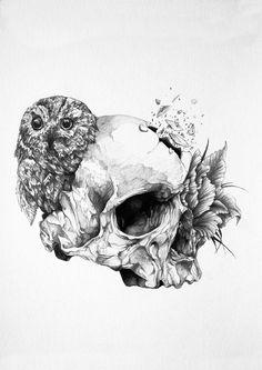 Ivan Kamargio illustration black white skull owl