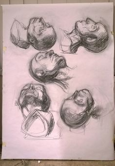 study of head