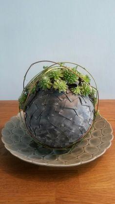 stiropor bol bekleed met fietsband in een opening plantjes poten Sempervivum-vetplant