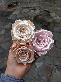 Τριαντάφυλλα που διαρκούν  για χρόνια! Forever Rose, Roses, Flowers, Plants, Pink, Rose, Plant, Royal Icing Flowers, Flower