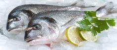 Tips para congelar pescado