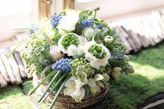 フラワーアレンジメント/ムスカリ/花どうらく/花屋/http://www.hanadouraku.com/flower arrengement/