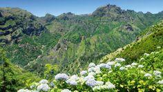 Madeira - Blühende Gärten und Levadas (Nov - April) - Der Klassiker im Westen