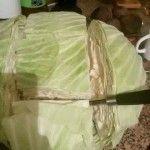 Sarma sararken çoğu zaman kalem gibi şekli veremeyiz bunun sebebi de lahanayı keserken yanlış kesmekten kaynaklanır.İşte doğru lahana kesme biçimi [gallery columns=