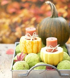 For an easy autumn display, craft a festive set of candleholders from gourds. More pumpkins for fall:  http://www.bhg.com/decorating/seasonal/fall/pretty-pumpkins-for-fall/?socsrc=bhgpin092613candleholders#page=6