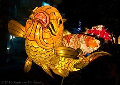 Nagasaki: Lantern Festival Standouts    unframedworld.com