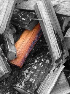 Wood you focus