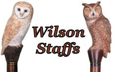 Custom Hand carved wood walking staffs, carved wood hiking staffs, carved hiking sticks by Ivan Wilson of Wilson Staffs Walking Sticks And Canes, Walking Canes, Carved Wood, Hand Carved, Army Medic, Hiking Staff, Big Horn Sheep, Great Grey Owl, Wire Haired Dachshund