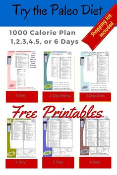 Printable 1000 Calorie Paleo Diet for 6 Days or less, grocery list included