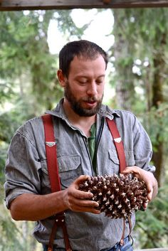 """There are a couple dozen species of pine growing around the world that produce the edible pine seeds that we know as """"pine nuts"""". #science #scouts"""