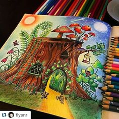 Dia e noite by @flysnr #florestaencantada #johannabasford #desenhoscolorir #coloringbook #coloringbookforadults #jardimsecreto #enchantedforest
