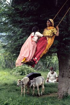 Indian girls on a swing -- I love this photo -- It's such a confirmation that childhood pastimes are similar the world over.
