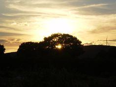 Puesta de Sol en Campos de Montiel