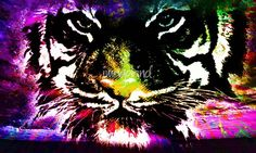 """""""Tiger eyes"""" by DoriMarie Maccabee,  //  // Imagekind.com -- Buy stunning fine art prints, framed prints and canvas prints directly from independent working artists and photographers."""