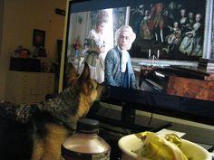 Kyreah watching Amadeus.