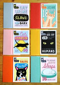 Colorful and funny flat notecard set with vibrant envelopes. Miss Mewow's cat facts are sure to charm and entertain any cat lovers on your gift list.