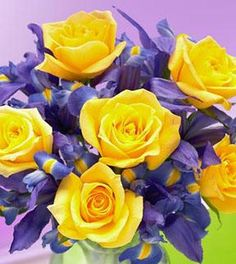 Iris & Yellow Rose Bouquet - Wrapped