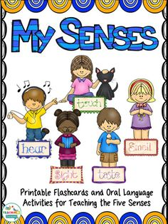 The Five Senses Language Activity Set is perfect for speech & language therapy!