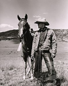 Horse and Cowboy                             -(1838-2869 / ghi-andrg00157 © Glasshouse Images)