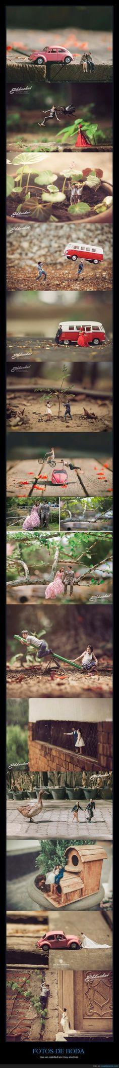 Fotógrafo convierte a los novios en personas en miniatura