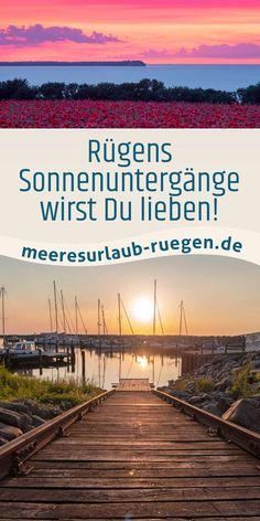Wir lieben Rügen und möchten auch Dich von unserer schönen Insel an der Ostsee in Deutschland begeisern. Und womit geht das besser als mit romantischen Augenblicken. Schau doch mal vorbei. Urlaub fernab vom Trubel. Wem das gefällt, der fühlt sich bei uns wohl. Mit einer traumhaften Natur vor der Haustür haben wir die richtige Ferienwohnung für Single sowie große und kleine Familien. #Rügen #Urlaub #Meer #MeeresurlaubRuegen