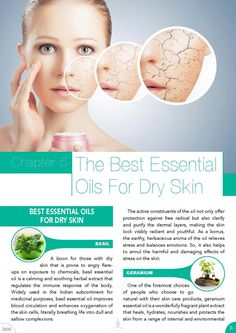 Do You Want To Immediately Reverse Your Dry Skin Issues – Best Essential Oils And Recipes Essential Oil Benefits Facial For Dry Skin, Oil For Dry Skin, Cream For Dry Skin, Palmarosa Essential Oil, Essential Oils For Skin, Essential Oil Blends, Homemade Face Moisturizer, Moisturizer For Dry Skin, Dry Flaky Skin