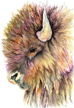 watercolor painting Returning Buffalo by NightSightArt on Etsy Painting & Drawing, Watercolor Paintings, Buffalo S, Buffalo Tattoo, Buffalo Painting, Bison, Farm Art, Watercolor Animals, Wildlife Art
