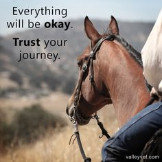 Horse quote, every thing will be OK. #ValleyVetSupply