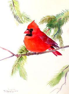 Cardinal bird original watercolor painting birds by ORIGINALONLY, $24.00