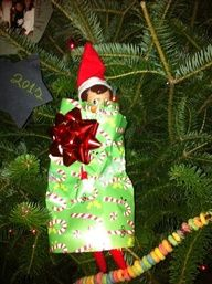 elf on a shelf :: wrapped himself up!