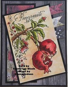 Pomegranate card by jennie black image by Stampendous. Distress ink watercolor