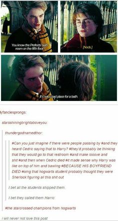 I kinda ship them too but not as much as Drarry (for life)