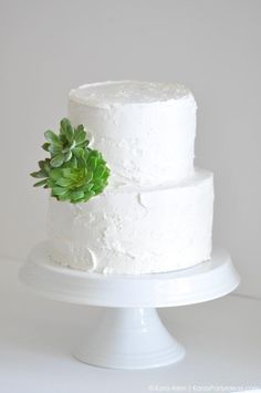 Succulent Mother's Day White Frosted Cake by Kara Allen | Kara's Party Ideas | KarasPartyIdeas.com for Cake Boss #MichaelsMakers